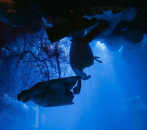The Oceanic Plasticarium je varovná instalace kousku moře zanesené plastem