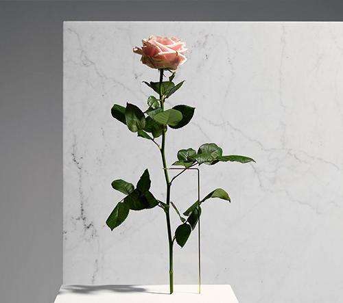 """Vázy """"Posture""""  umožňují uložit květy do nevšedných poloh"""