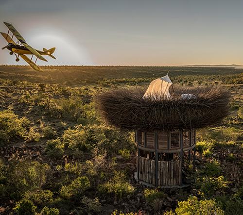 Obří hnízdo v Keni umožňuje hostům spát nad stromy