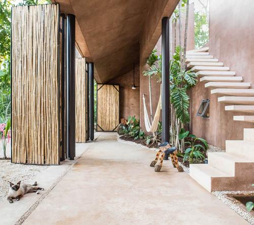 TACO navrhuje dům v mexickém palmovém lese